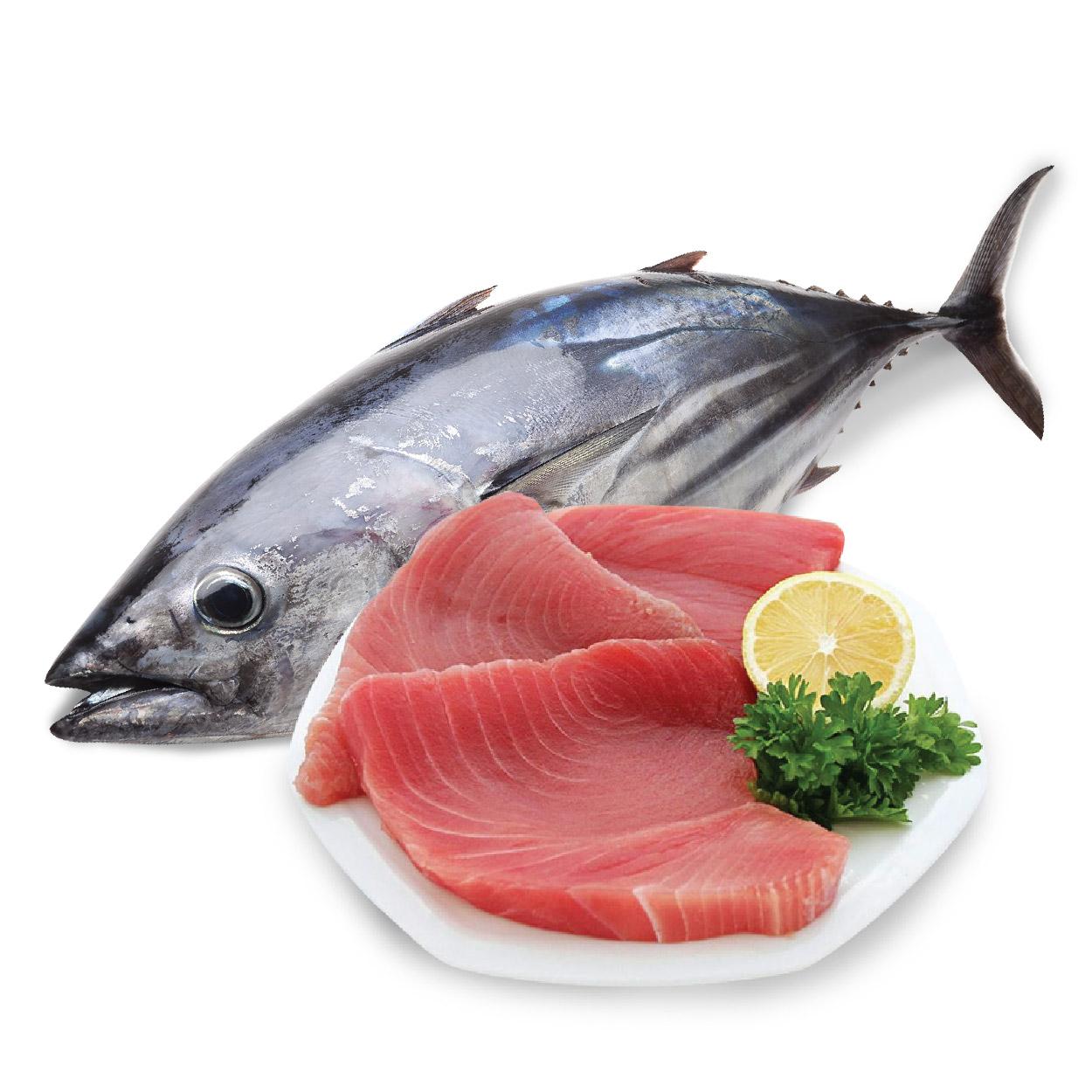 Mắt cá ngừ đại dương và các món ăn từ cá ngừ là đặc sản hải sản ngon Phú Yên không thể bỏ qua