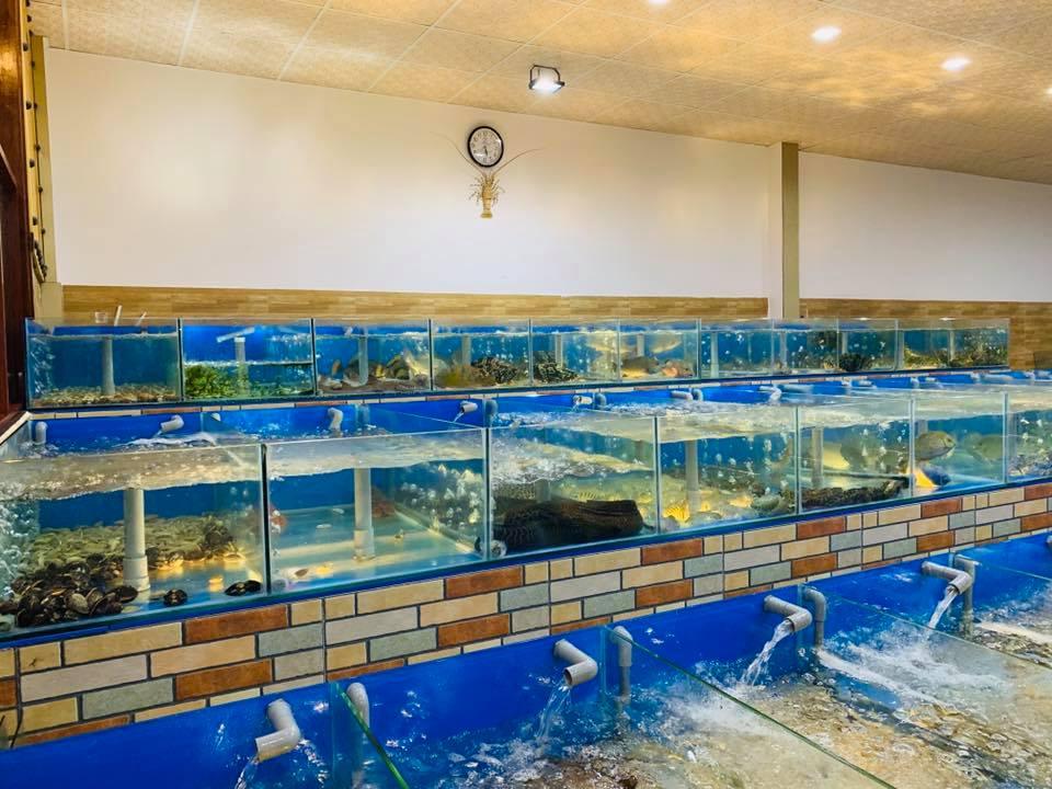 Bể hải sản tươi sống tại nhà hàng chúc xíu phú yên