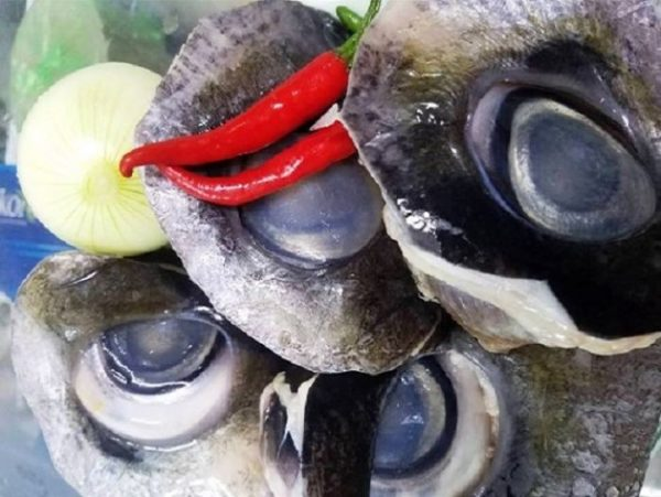Hình ảnh mắt cá ngừ đại dương minh họa